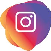 logo instagram cochiskin