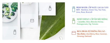 Mặt-Nạ-Giấy-Innisfree-My-Real-Squeeze-Mask-Aloe